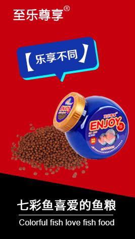 七彩神仙鱼饲料100g